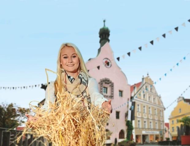 Herbstmarkt Abensberg